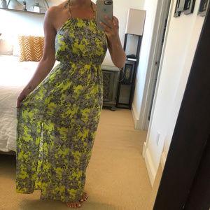 Vici Floral Print Maxi Dress